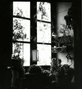 Chez Françoise2